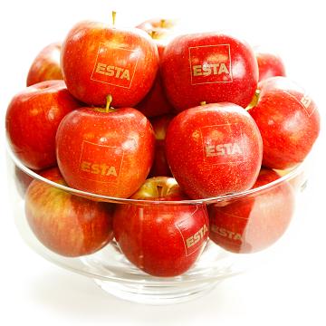 ESTA fördert aktiv Maßnahmen zur Gesundheitsvorsorge.