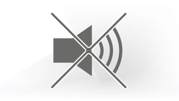 Icon Geräuscharm