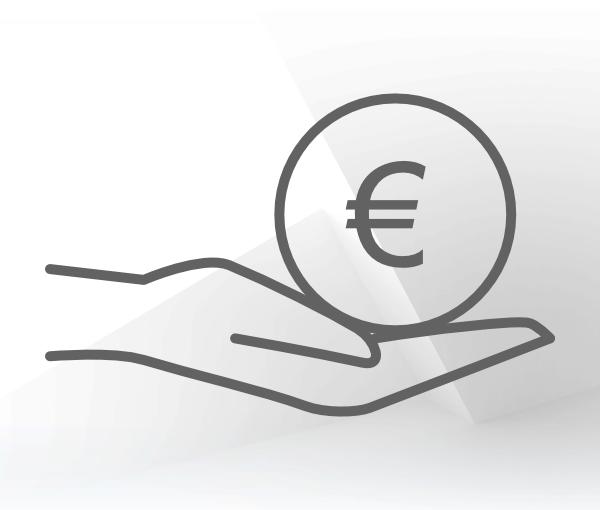 Icon Anschaffungskosten